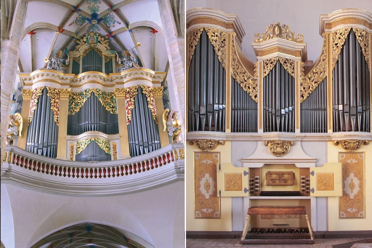 Die große Orgel von Gottfried Silbermann / Die kleine Silbermannorgel auf der Lettnerempore